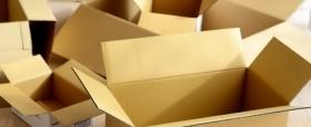 В правительстве вдвое увеличивают норматив утилизации товаров и упаковки из картона на 2018 год